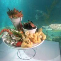 Wharf Restaurant Aquarium Merimbula