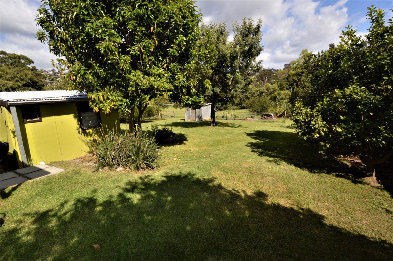 Sunny Brook Backyard